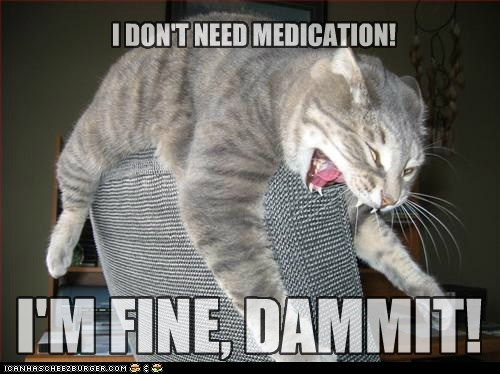 anxiety,cat,crazy,lolcat,medication,pills,rx,scream,yell