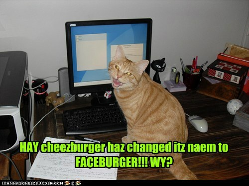 Cheezburger Image 6032657664