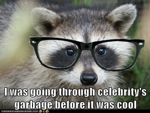 before it was cool celeb glasses hipsters photoshopped raccoon raccoons trash - 6032672000