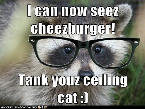Cheezburger Image 6032868864