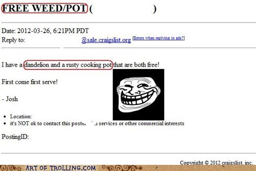 craigslist free pot shoppers beware weed - 6033018624