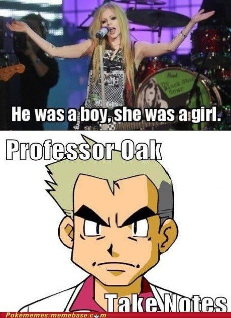 avril lavigne,Memes,professor oak,you dont say