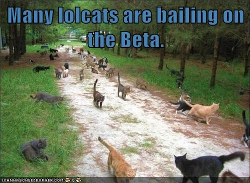 Many lolcats are bailing on the Beta.
