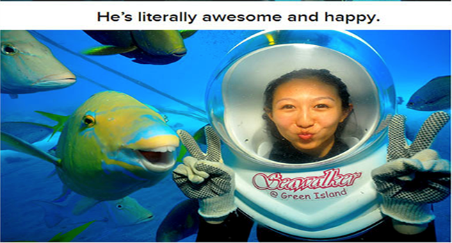 fishes lolz funny story australia cute lol story funny fish selfie fish funny weird - 6034181