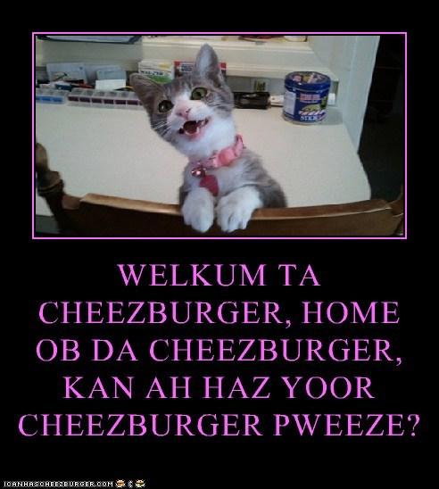 Cheezburger Image 6034375168