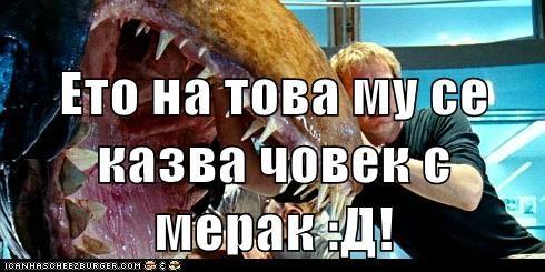 Cheezburger Image 6034903040