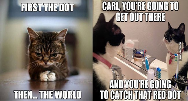 a funny two photos of cat memes and about capturing the red dot, which is a laser pointer from the human, and a cover photo for a list of a bunch of cat memes about cats finally being able to capture the red dot