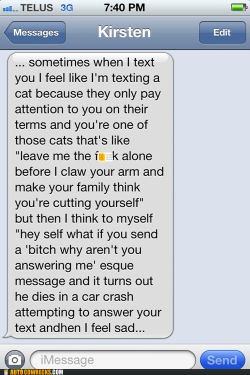 car crash,cat,dies,ignore,neurotic,text me back