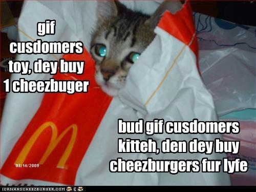 Cheezburger Image 6036054016