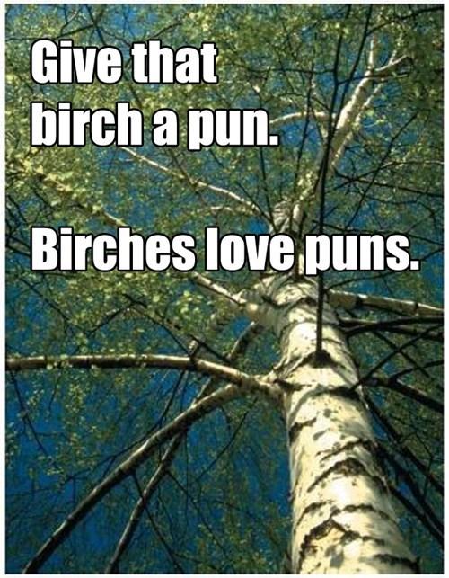 birch Ladies Love puns similar sounding - 6036145152