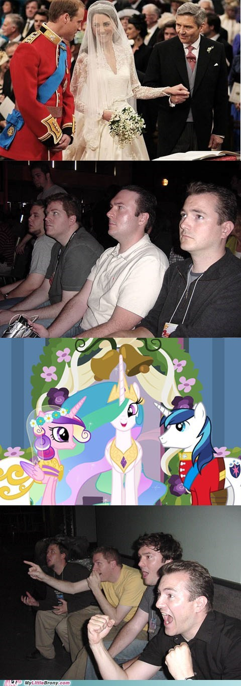 meme ponies are better reaction guys season finale wedding - 6036784640