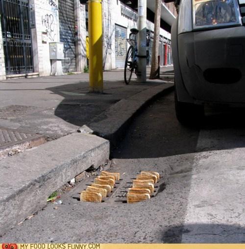drain,storm drain,street,toast