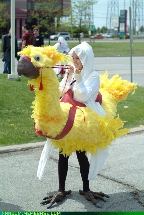 chocobo,cosplay,final fantasy,video games