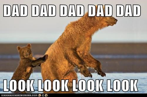 annoying attention bear bears child dad family kids look Other Animals - 6036953856