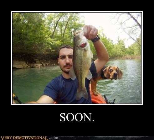 dogs fish hilarious photobomb SOON - 6037789184