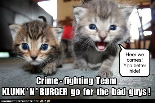 Cheezburger Image 6037876736
