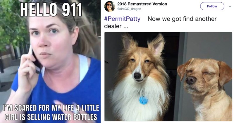marijuana for animals dogs racism alison ettel calling the cops alison ettel memes permit patty bbq becky memes california permit patty memes weed oakland marijuana for dogs bbq becky - 6039301