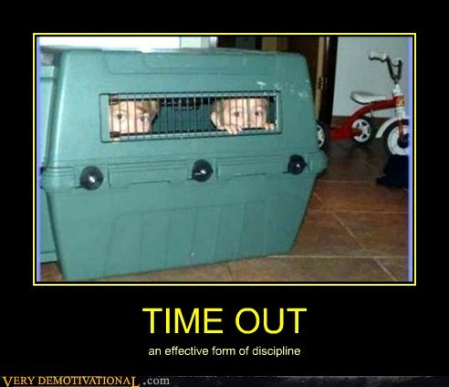 cage dogs hilarious kids time out wtf
