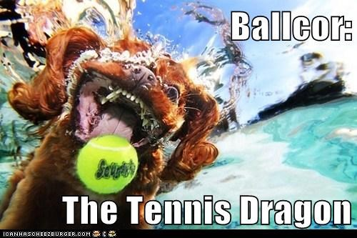 dogs,falcor,neverending story,tennis,tennis ball,The Never Ending Story,underwater