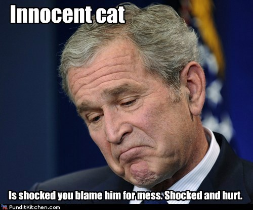funny,george w bush,Hall of Fame,president,republican