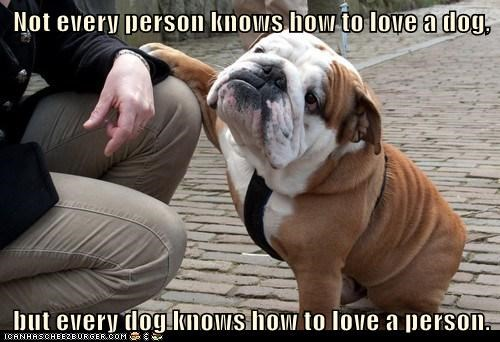 best of the week,bulldog,dogs,Hall of Fame,humans,love,reciprocation,sweet