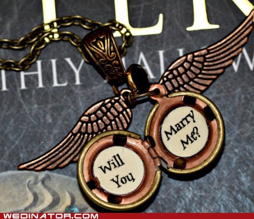 funny wedding photos golden snitch Harry Potter proposal quidditch - 6040599552