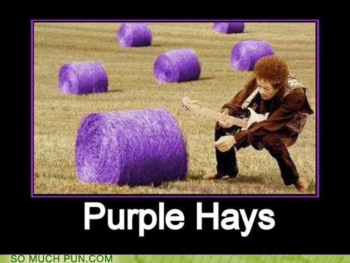 double meaning Hall of Fame hay hays jimi hendrix literalism purple purple haze