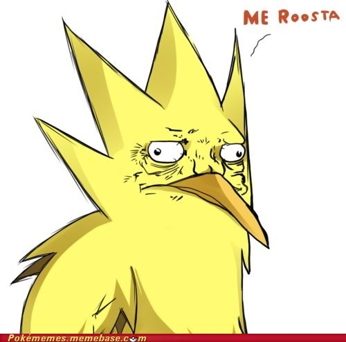 flying type me gusta me roosta Memes roosta zapdos - 6040875264