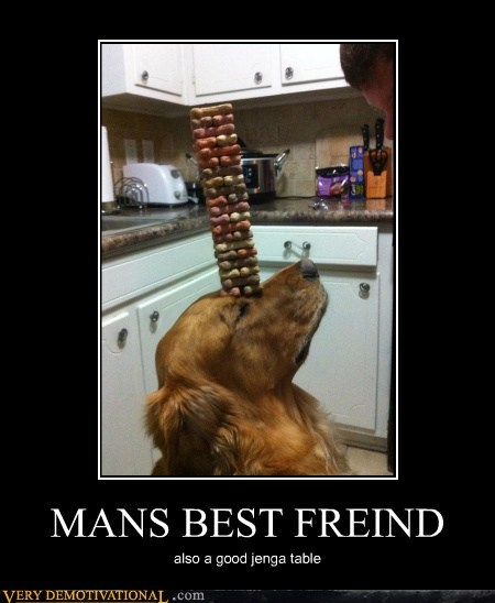 MANS BEST FREIND also a good jenga table