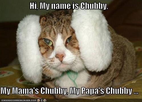 Funny Meme Hi : Hi my name is chubby my mama s chubby my papa s chubby