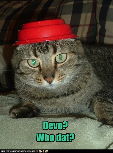 confused,Devo,flower pot,hat,resemblance,similar