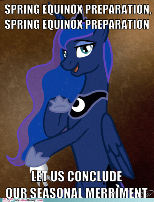 luna ducreux meme ponify winter wrap up - 6043154688