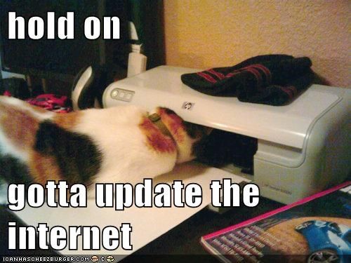 cat climb fix inside internet lolcat printer repair - 6043557632