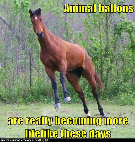 balloon animals,floating,horse,jumping,lifelike