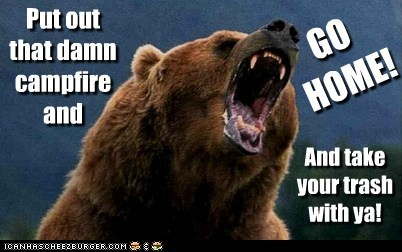 angry,bear,campfire,go home,Smokey the Bear,trash