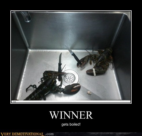 boiled,hilarious,lobster,winner