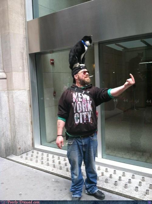 cat Hall of Fame new york so hardcore - 6044388608