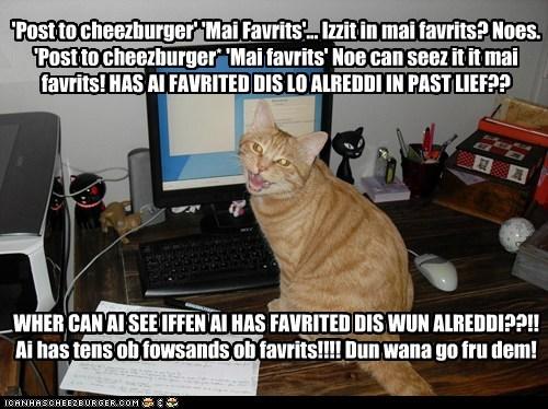 Cheezburger Image 6044424448