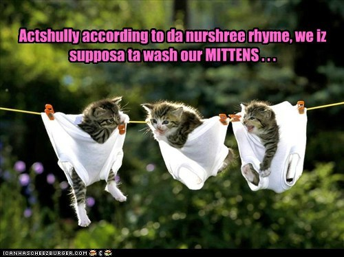 kitten misunderstanding mittens nursery rhyme washing - 6044426496