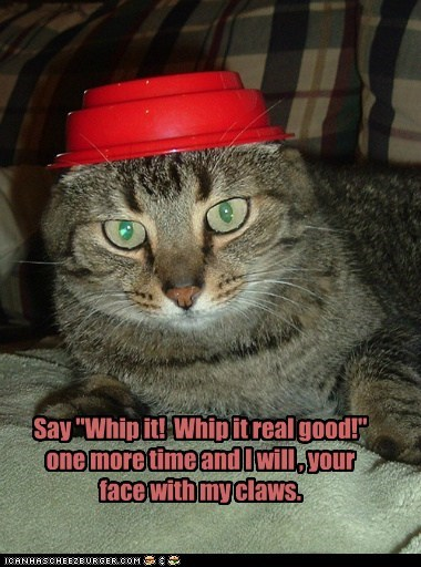 """Say """"Whip it! Whip it real good!"""" one more time and I will , your face with my claws."""