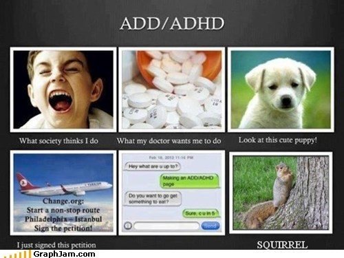 add,adhd,best of week,drugs,puppy,squirrel