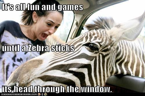 fun games Party scared scream window zebra - 6045384192