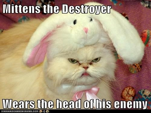 Mittens the Destroyer Wears the head of his enemy