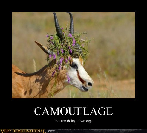 antelope,camouflage,hilarious,wrong