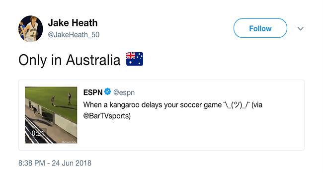 game relaxing lolz twitter kangaroo interesting cute funny cute lol tweets soccer funny - 6045957