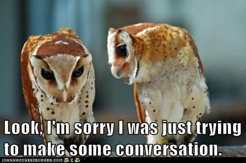 apologizing bad conversation memories offended owls Sad sorry - 6046262272