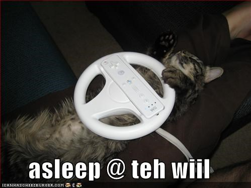 driving,lolcats,sleeping,wheel,wii