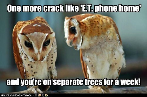 crack joke Okay owls punished Sad scolding separate slumping trees wife