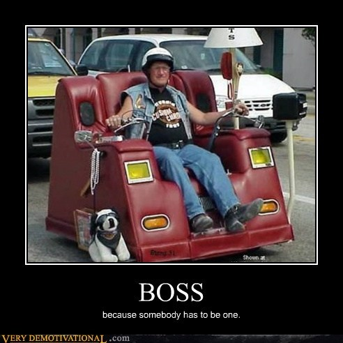 car chair Like a Boss Pure Awesome wtf
