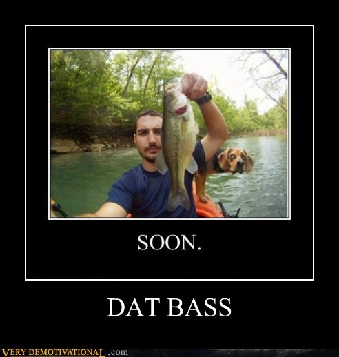 bass dogs hilarious SOON - 6047363584